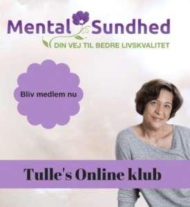 Tulle's Online Klub