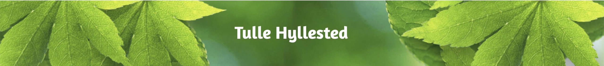 tulle hyllested