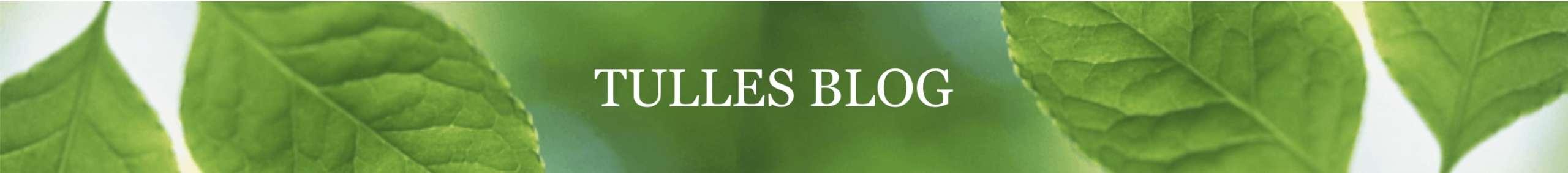 Blog fra Tulle Hyllested